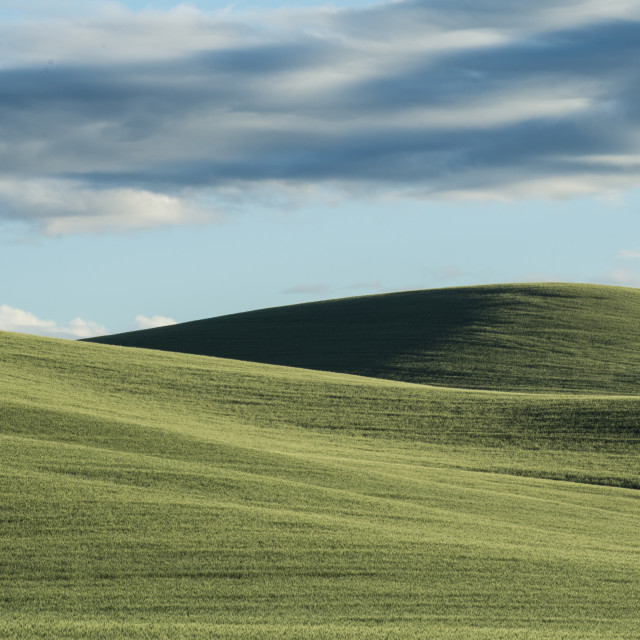 """Scenic view of Palouse Hills against cloudy sky"" stock image"