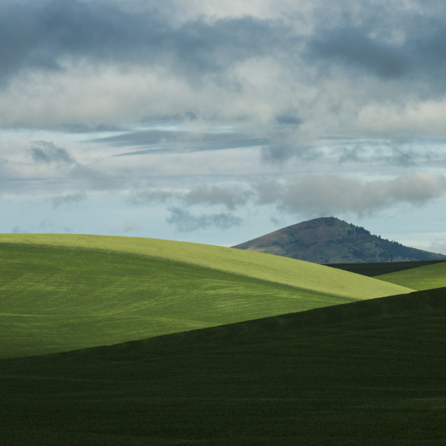 """Idyllic view of Palouse Hills against cloudy sky"" stock image"