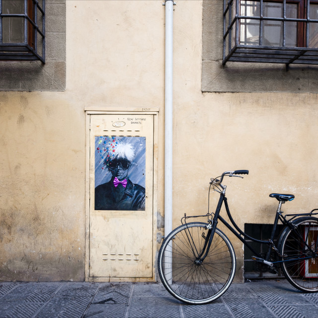 """Urban Street Art, Via dell'Alloro, Florence"" stock image"
