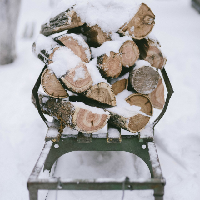 """Stack of snow covered chopped wood on sledge"" stock image"