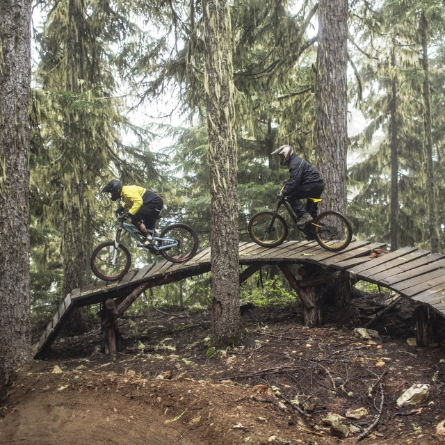 """Friends riding mountain bikes on boardwalk in forest"" stock image"