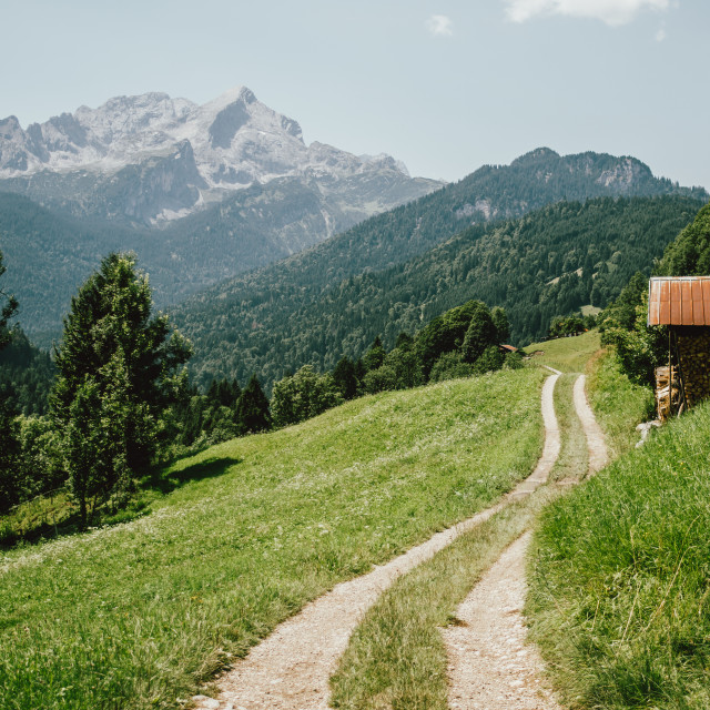 """""""Trail In German Alps"""" stock image"""