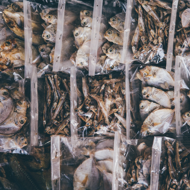 """Dried Fish"" stock image"