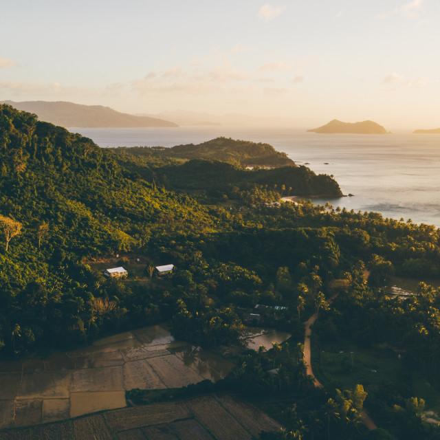 """Palawan Coast"" stock image"