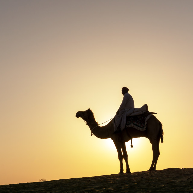 """""""Silhouette of Indian man riding a camel during sunrise at Thar Desert in Jaisalmer, Rajasthan, India"""" stock image"""