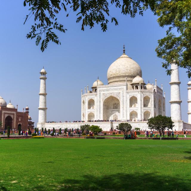 """View of Taj mahal in Agra, Uttar Pradesh, India."" stock image"