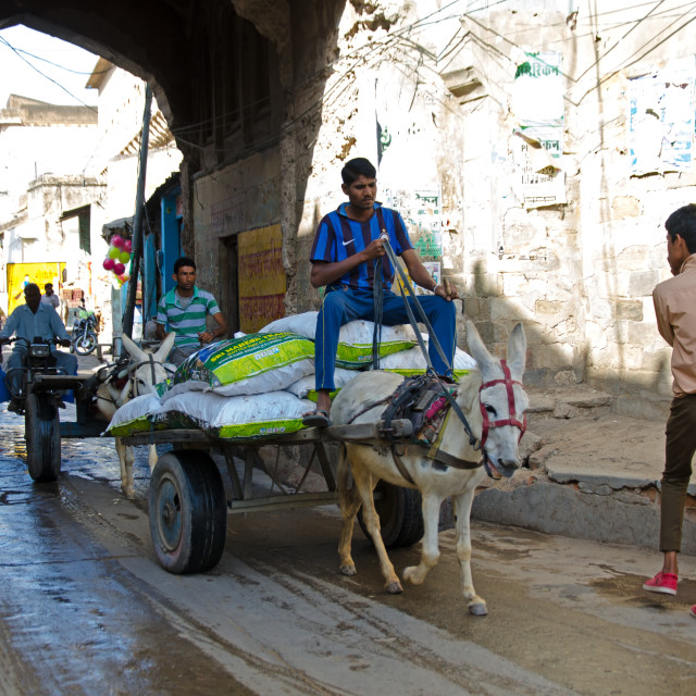 """""""Street view with people on the street and a donkey carrying a loads."""" stock image"""