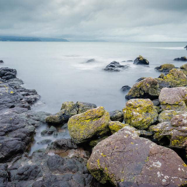"""""""On Skernaghan Point, Islandmagee"""" stock image"""