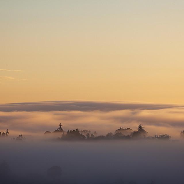 """heavy morning fog"" stock image"