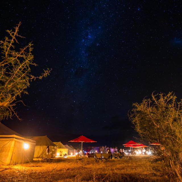 """Safari Night sky"" stock image"