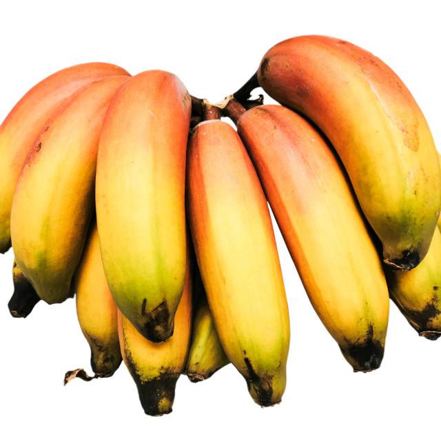 """Colorful ripe bananas isolated on white"" stock image"