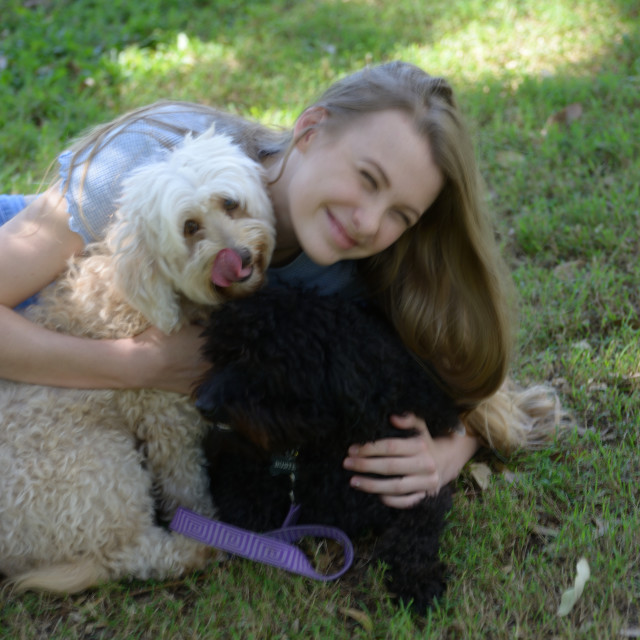 """Puppy Love"" stock image"