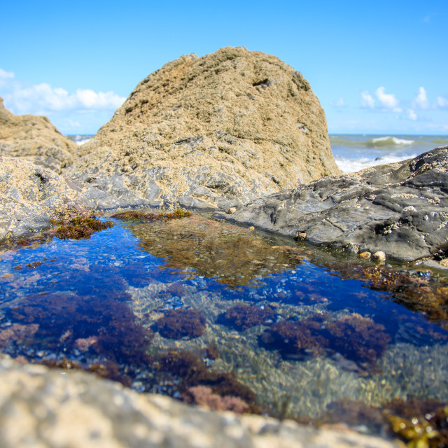 """Rock Pool"" stock image"