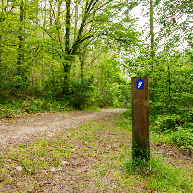 """Minwear Woods Footpath sign"" stock image"