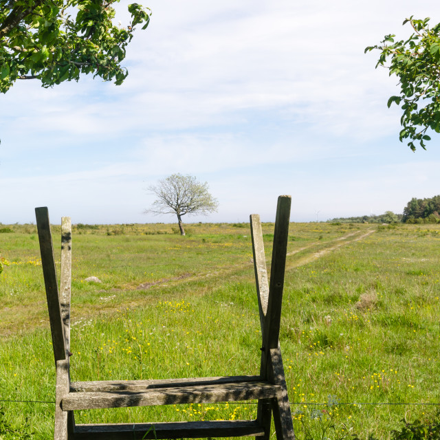 """Wooden stile by a green and bright pastureland by spring season"" stock image"