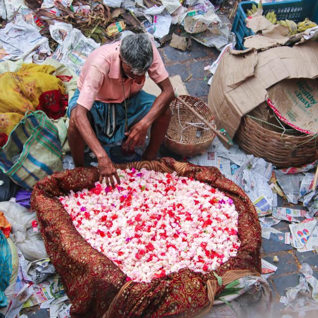 """""""Mullick Ghat Flower Market in Kolkata"""" stock image"""