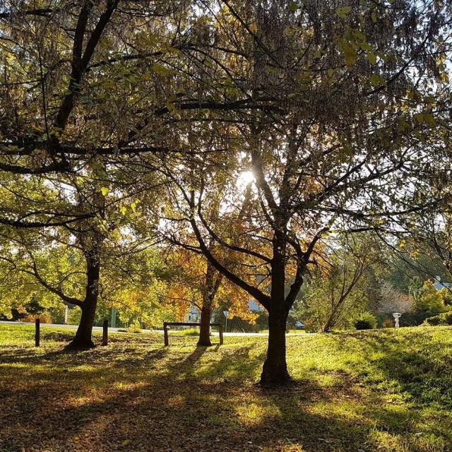 """""""Autumn Stroud Valley"""" stock image"""