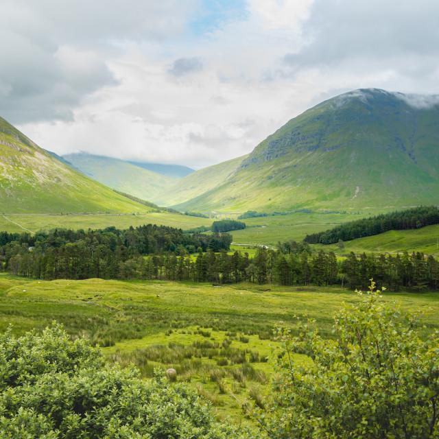 """""""A Scottish Highland Landscape"""" stock image"""