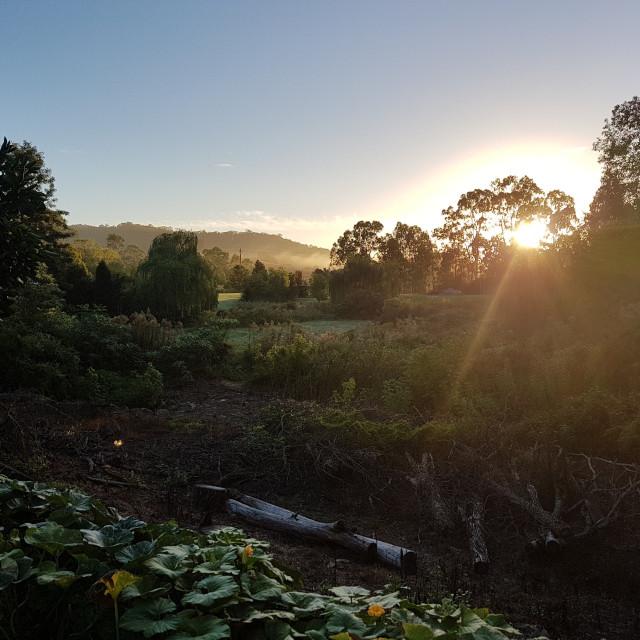 """Sunrise Stroud NSW Australia"" stock image"