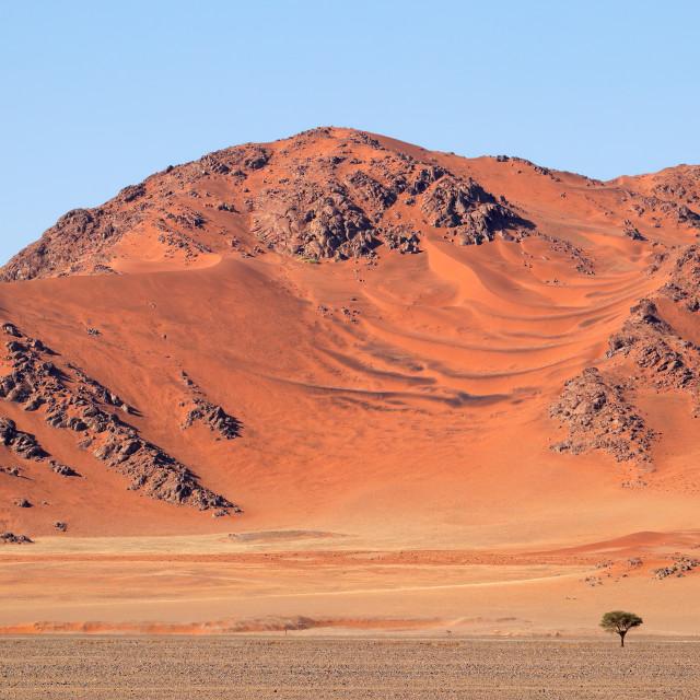 """""""Rugged dune landscape - Namib desert"""" stock image"""
