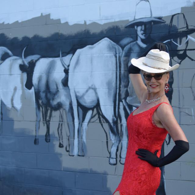 """Painted Bullock Dray"" stock image"