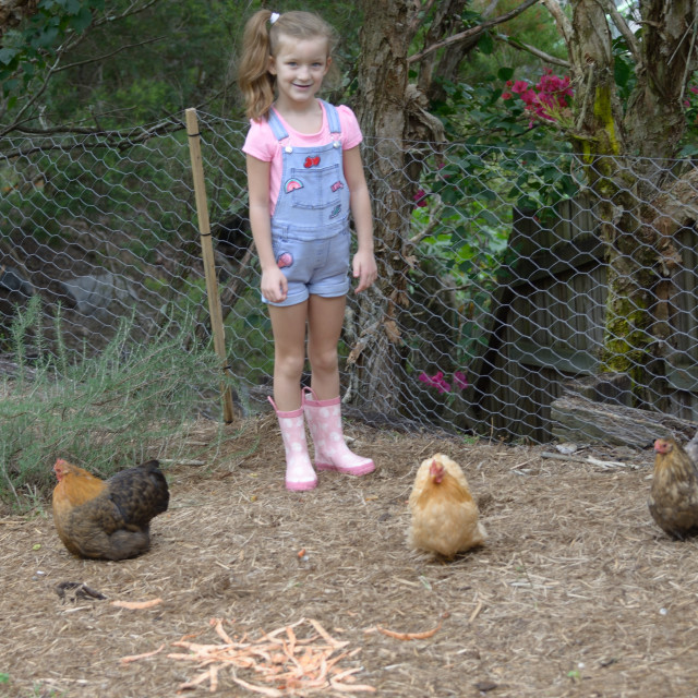 """Girl and Chickens"" stock image"
