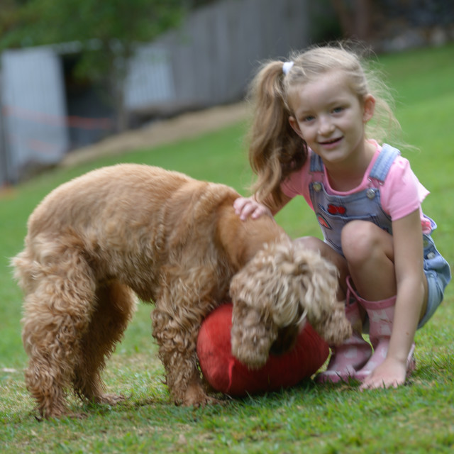 """""""Little Girl with her Dog"""" stock image"""