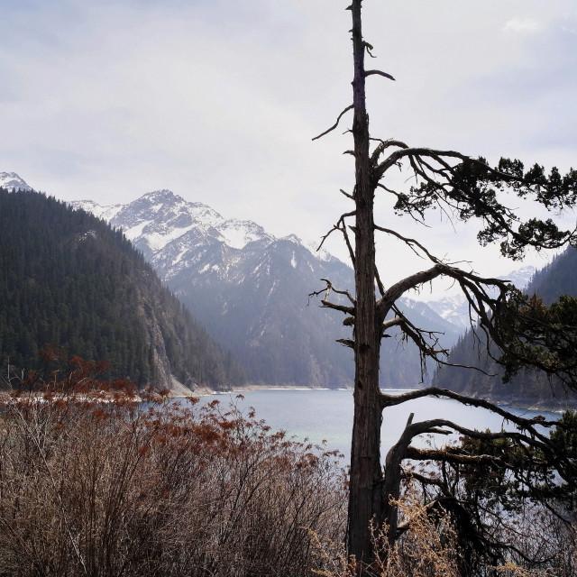 """Long Lake, Jiuzhaigou, China"" stock image"