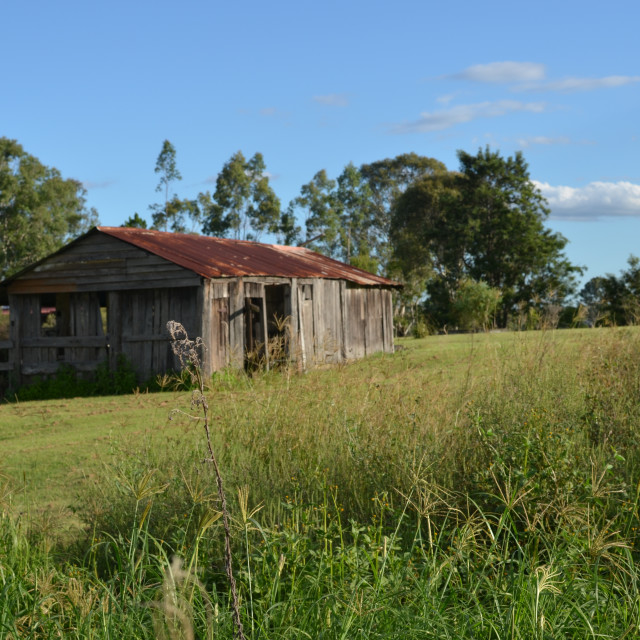 """Old Shed"" stock image"