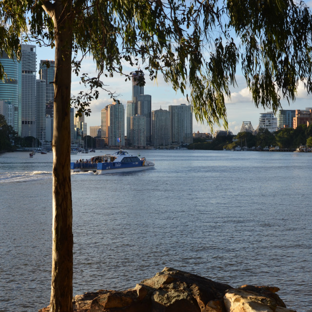 """City Cat on Brisbane River"" stock image"