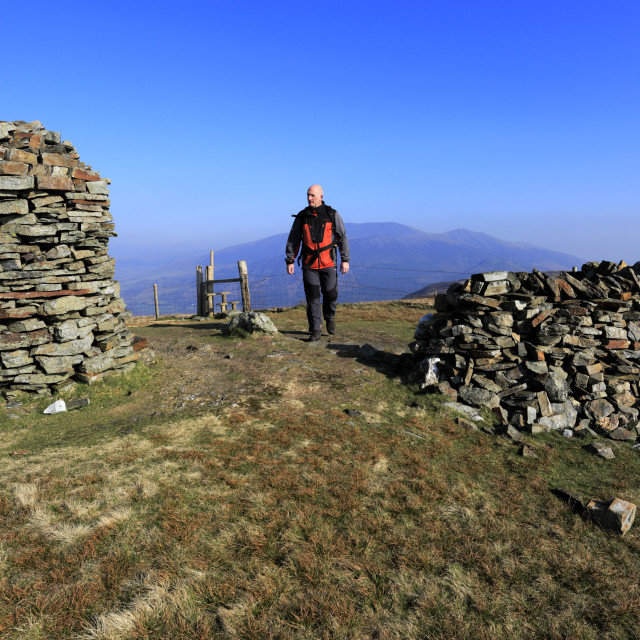 """Walker at the summit of Broom Fell, Keswick town, Lake District National..."" stock image"