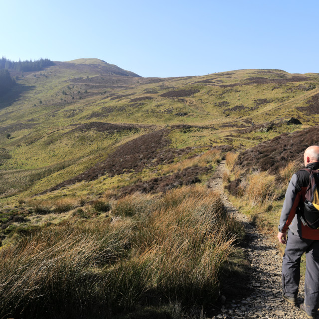 """""""Walker on the summit of Barf fell, Keswick town, Lake District National Park,..."""" stock image"""