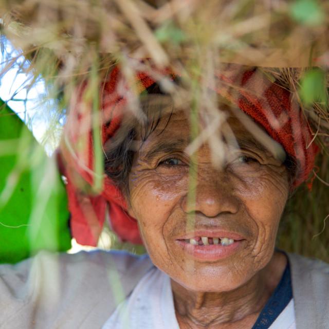 """People of Bali XIV"" stock image"