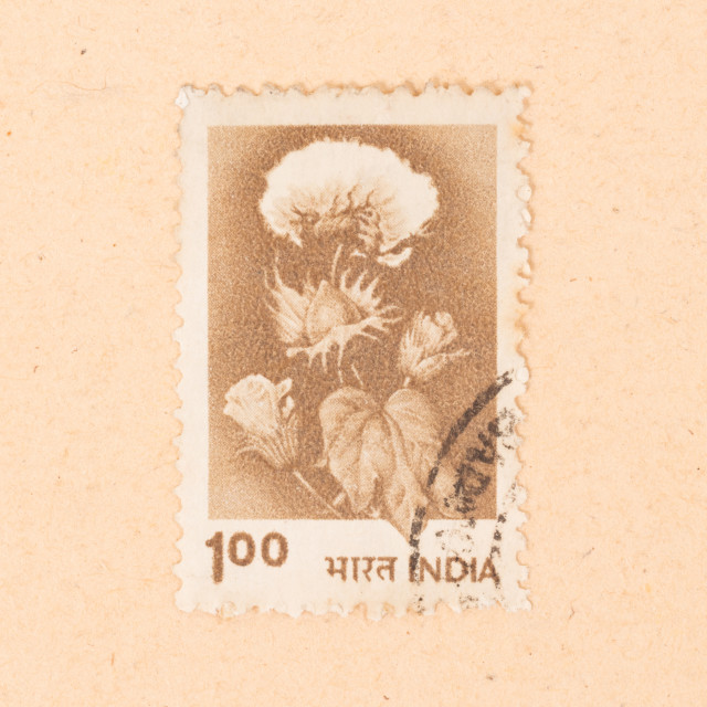 """""""INDIA - CIRCA 1970: A stamp printed in India shows a flower, circa 1970"""" stock image"""