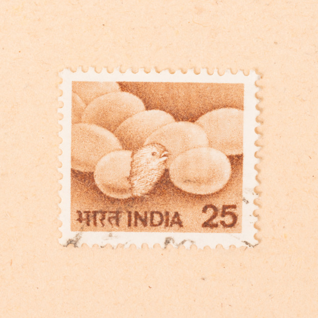 """""""INDIA - CIRCA 1970: A stamp printed in India shows eggs with a chick, circa 1970"""" stock image"""