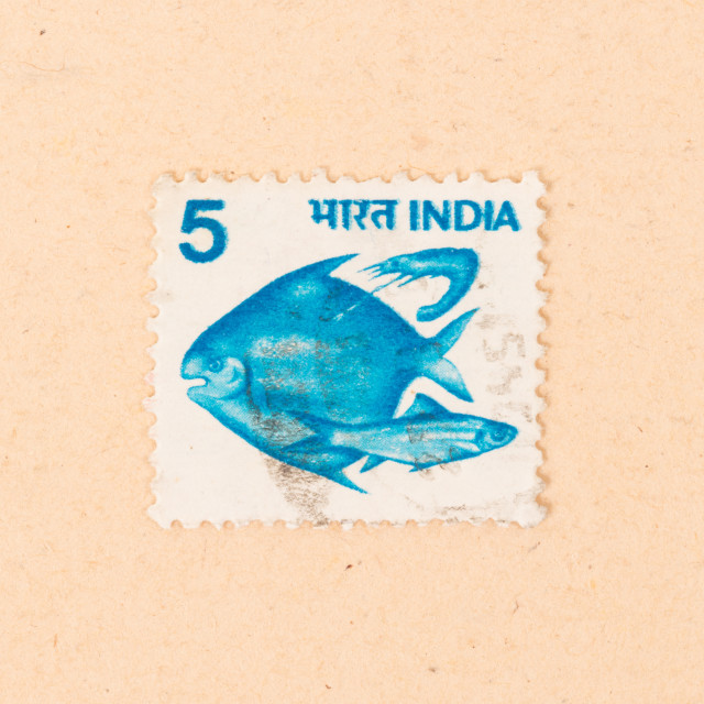 """""""INDIA - CIRCA 1970: A stamp printed in India shows some fish, circa 1970"""" stock image"""