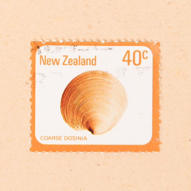 """""""NEW ZEALAND - CIRCA 1980: A stamp printed in New Zealand shows a Coarse..."""" stock image"""