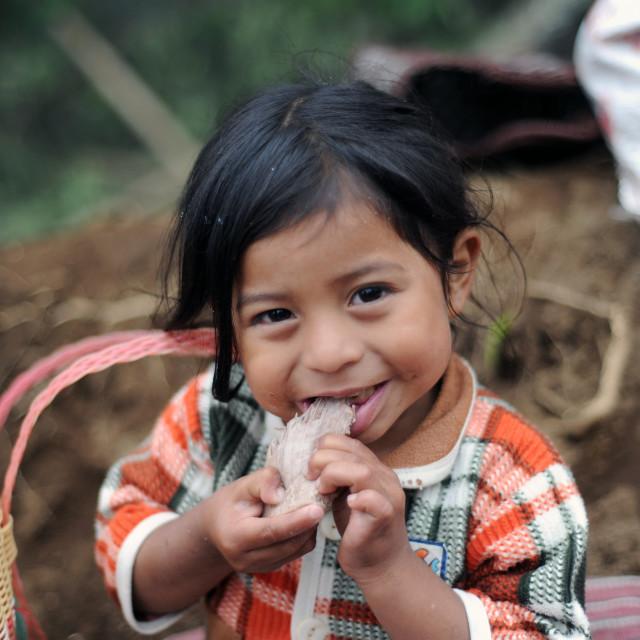 """A maya indigenous girl in Aqua Escondida, Solola, Guatemala."" stock image"