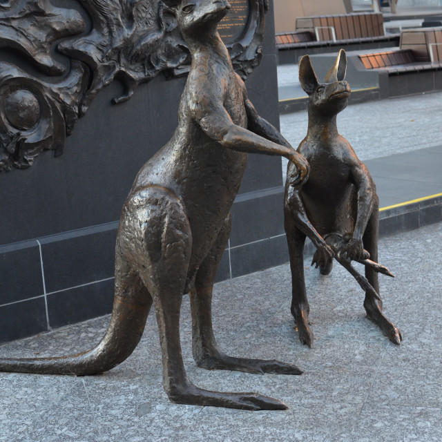 """Kangaroo statues"" stock image"