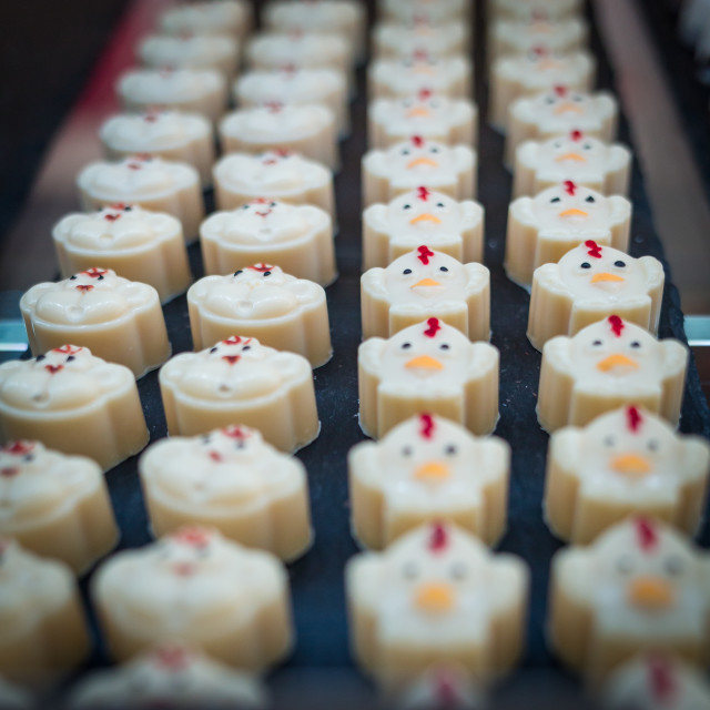 """Rows of white chocolates"" stock image"