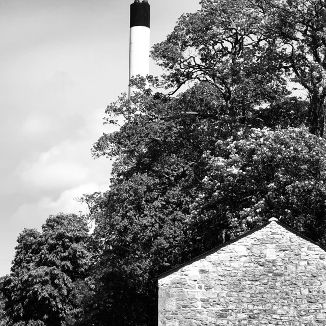 """Hospital furness chimney lurching out of the trees."" stock image"
