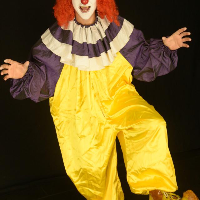"""Clown"" stock image"