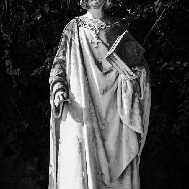 """El Jem Statue"" stock image"