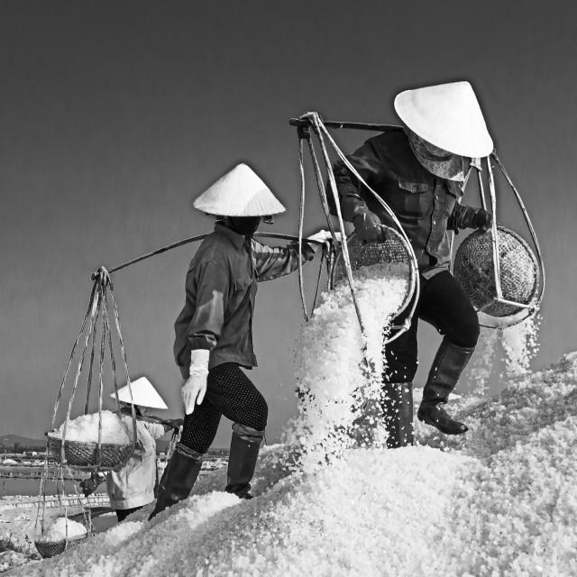 """""""Salt Worker #3"""" stock image"""