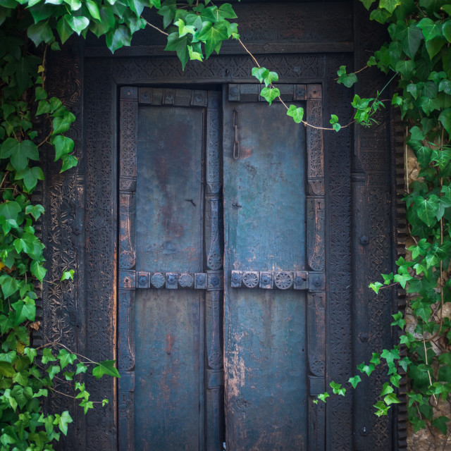 """Overgrown Secret Garden Door"" stock image"