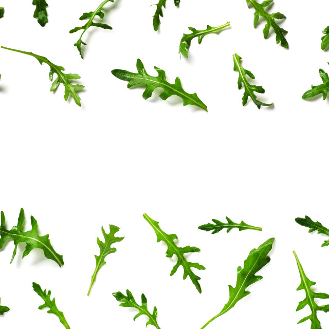 """""""Arugula pattern with copy space in center"""" stock image"""