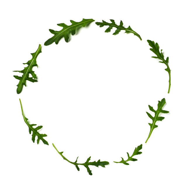 """""""Pattern from arugula in round frame isolated"""" stock image"""
