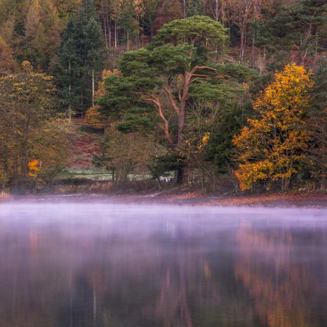 """Morning mist on Coniston Water"" stock image"