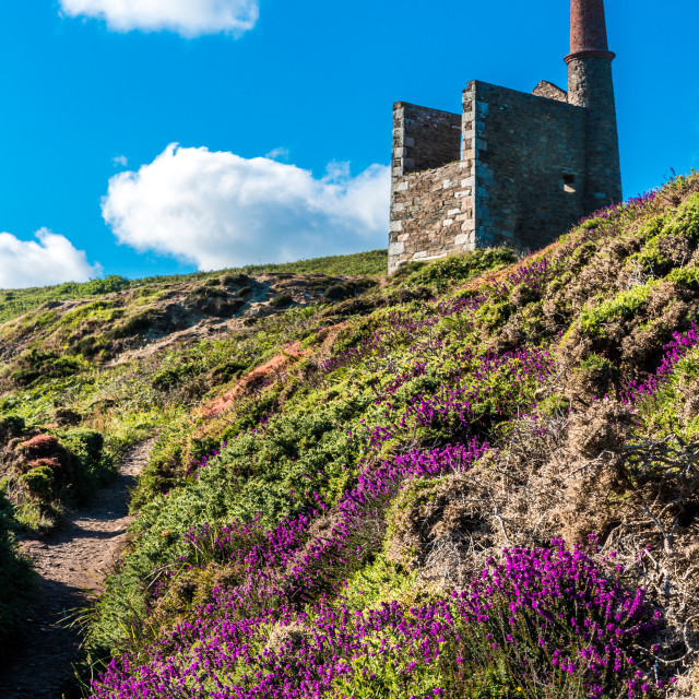 """Wheal Prosper mine"" stock image"