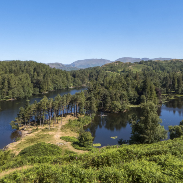 """Tarn Hows, Coniston"" stock image"